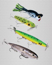 cat-baits-top-water3
